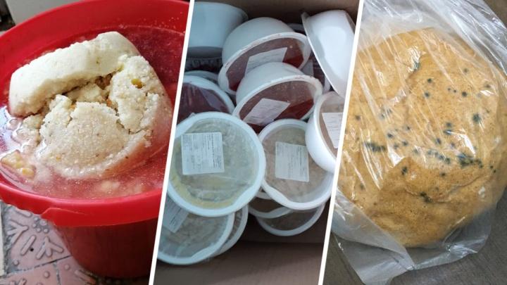 Медиков ковид-госпиталей Башкирии кормили испорченными продуктами