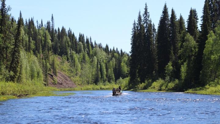 В правительстве Архангельской области согласились обсудить судьбу заповедников с защитниками природы