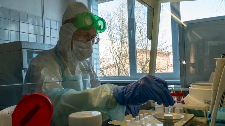 Подтверждены новые случаи заражения коронавирусом в Челябинской области