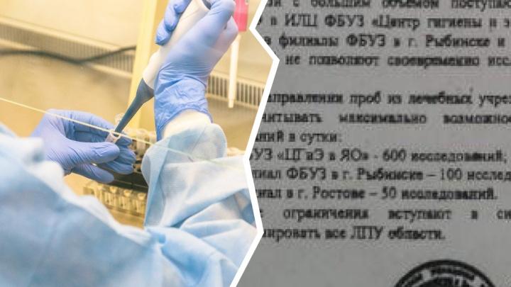В Ярославле медикам указали, сколько проб в сутки можно присылать для исследования на COVID-19