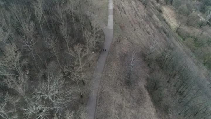 Видео дня: как парк «Швейцария» патрулируют с воздуха
