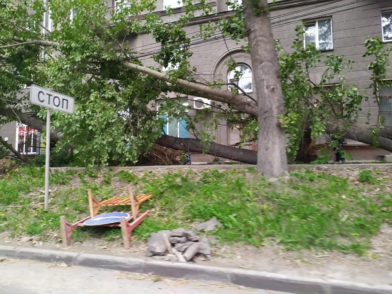 Упало как минимум три дерева