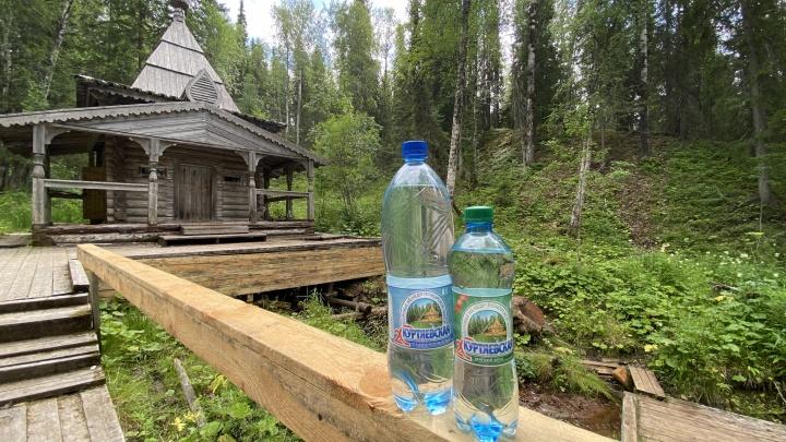 Куртяево — место силы: теперь к святому месту можно добраться по новым мосткам