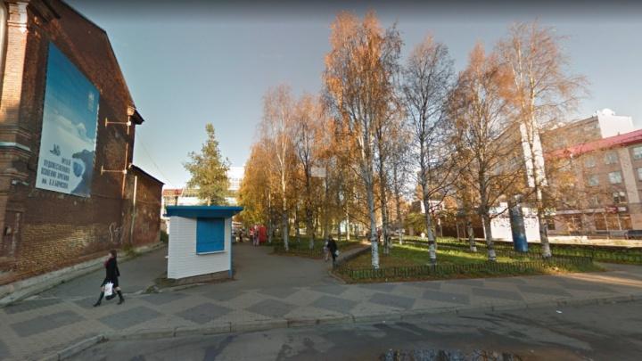 Ради строительства фондохранилища на Поморской улице срубят 54дерева