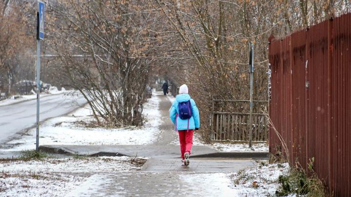 Полиция нашла нижегородку, сбившую на пешеходном переходе 7-летнюю девочку