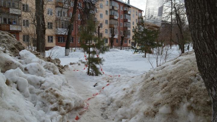 «Мы все в шоке»: в Перми на детской площадке нашли обезглавленное тело женщины