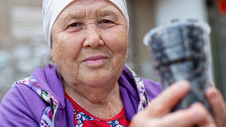 Почём клубничка у бабушки? Рассказываем, где в Челябинске продают лучшие ягоды и сколько они стоят