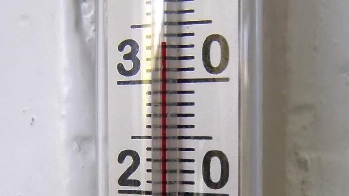 «В квартире температура +34»: жителей Полевского на все праздники оставили с горячими батареями