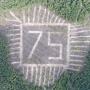 «Надпись будет видно с высоты». В Прикамье к юбилею Победы создали геоглиф