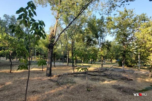 Парк «Русь» переживает не лучшие времена
