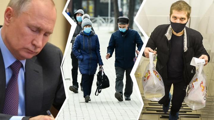 «Экономика должна быть как горячий жеребец»: владелец «Сушкоф» — о поддержке бизнеса во время кризиса