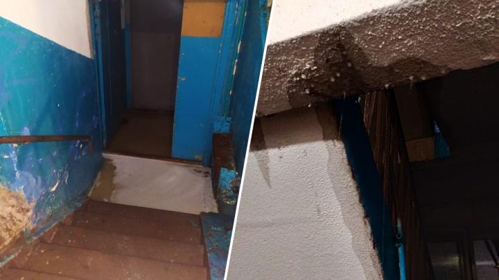 «Вода хлещет фонтаном, из подъезда не выйти»: в центре Екатеринбурга затопило девятиэтажку