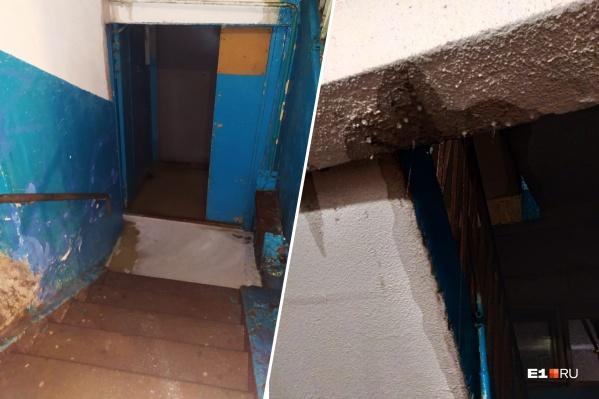 С такими последствиями штормового ветра и ливня столкнулись жильцы девятиэтажки на Тверитина