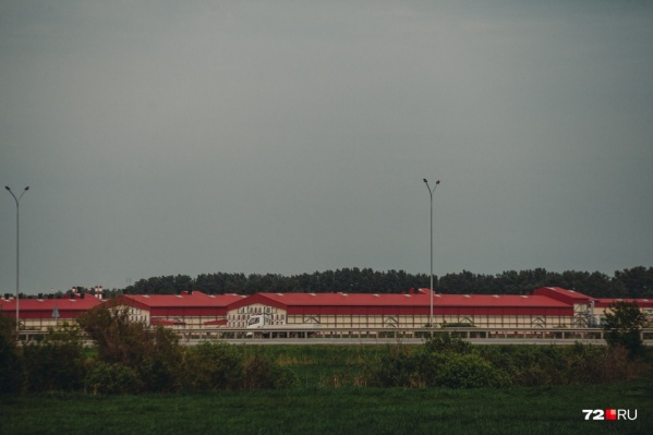 Боровская птицефабрика находится в 15 километрах от Тюмени