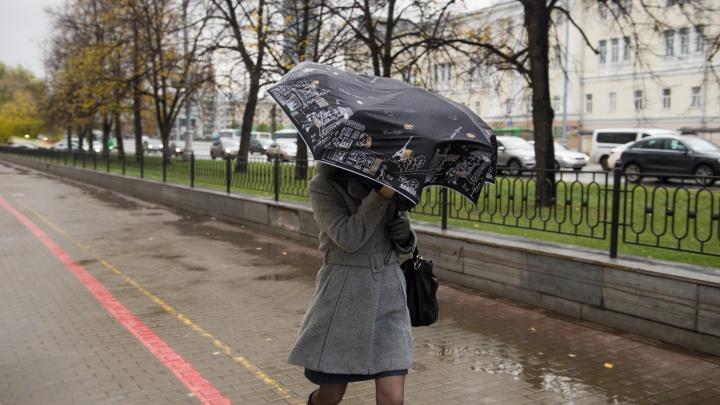 Спасатели попросили екатеринбуржцев оставаться дома из-за дождей и сильного ветра