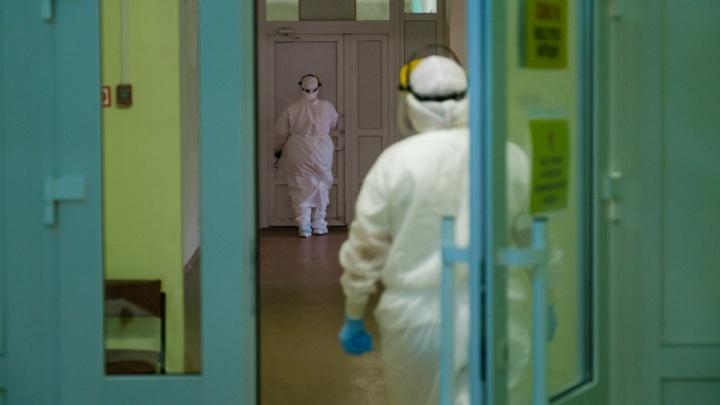 В Прикамье за минувшие сутки выявлен еще 231 случай заражения COVID-19