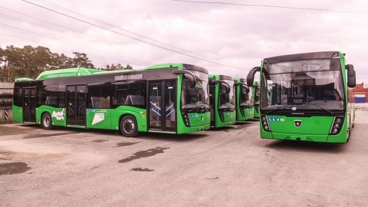 С кондиционером и широкими сиденьями: изучаем новенькие автобусы, которые вот-вот выйдут на линию