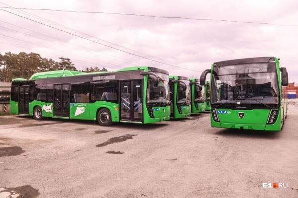 Новые автобусы пришли в парк в первых числах октября