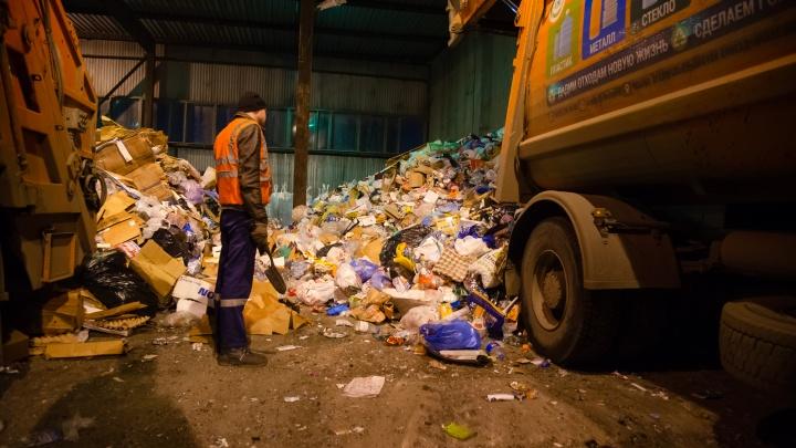 «ЭкоИнтегратор» через суд хочет обязать АМПК сортировать мусор из обычных баков