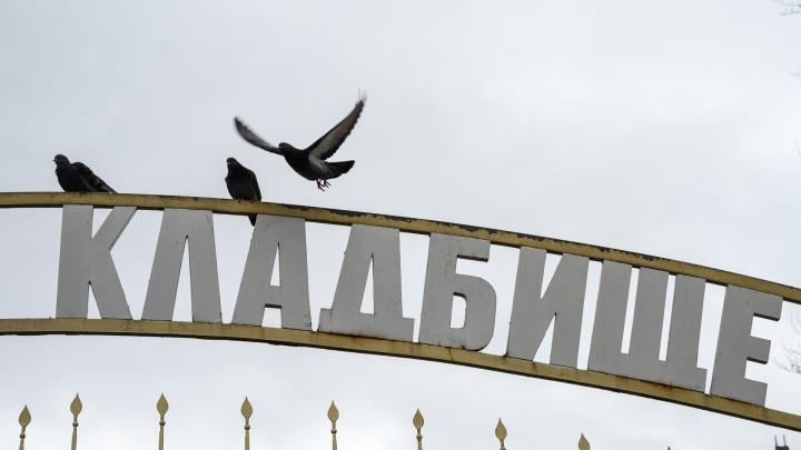 Власти Ростова собрались снизить стоимость кремации