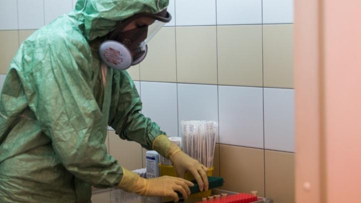 В Новосибирской области начали производить экспресс-тест на коронавирус