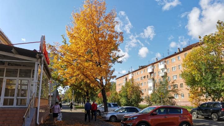 Тепла больше не будет: синоптики рассказали, каким будет конец сентября в Кузбассе