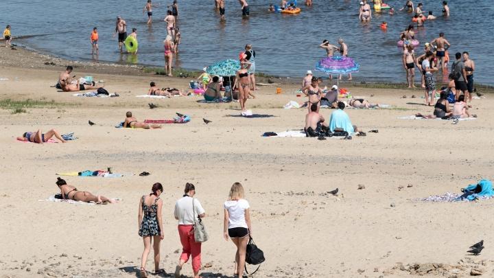 Схватила за шею и волосы: разъяренная собачница пыталась утопить на пляже волжанку