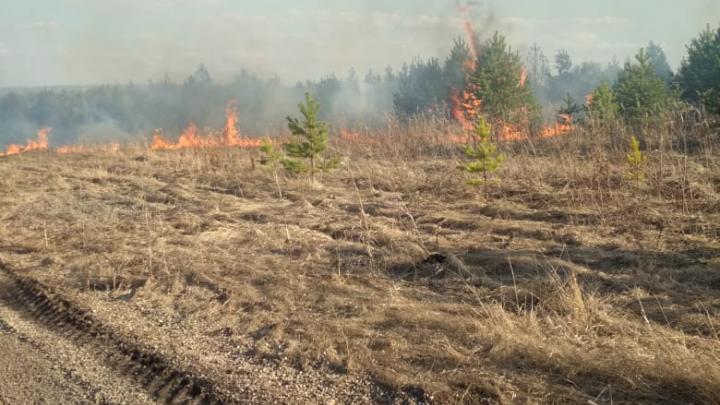 В Свердловской области между двумя деревнями полыхала сухая трава
