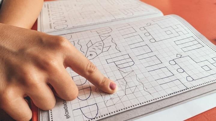 «Пошли делать задания — сайт упал»: челябинцы массово жалуются на систему дистанционного образования