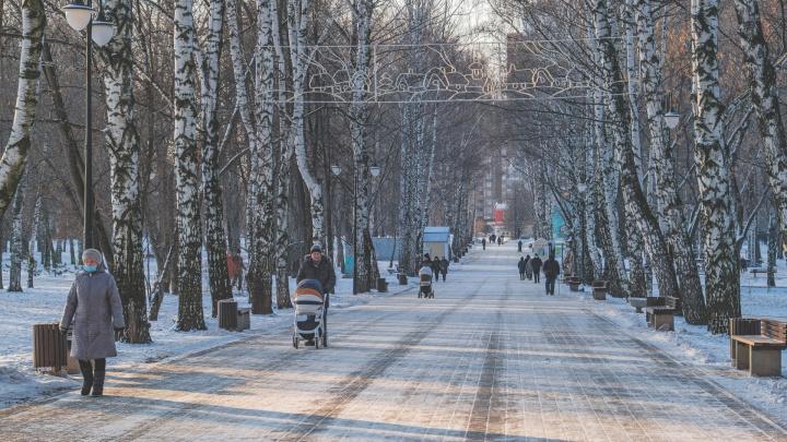Каким будет начало зимы? Синоптики рассказали о погоде в Пермском крае на декабрь