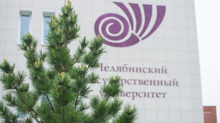 Топ-7 самых новых направлений магистратуры в ЧелГУ