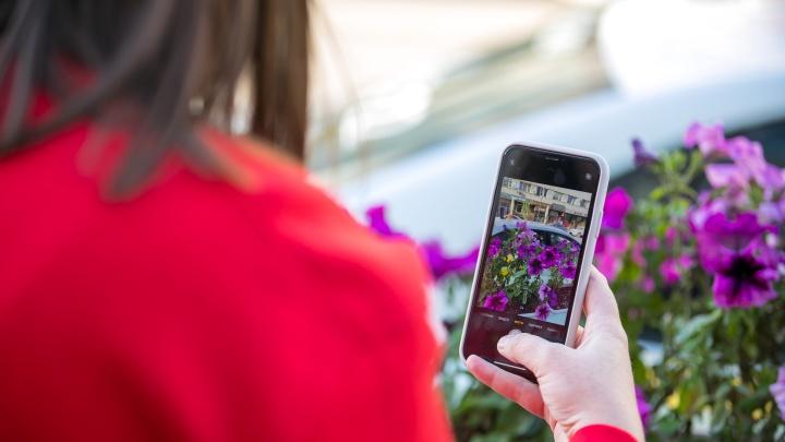 Как купить iPhone с рук и не облажаться. Очень подробная инструкция
