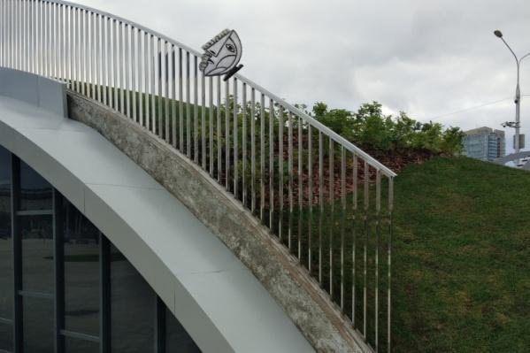 «Бабочку Бродского» хотели разместить на мостике или фонарном столбе на эспланаде, но в итоге её установят в другом месте