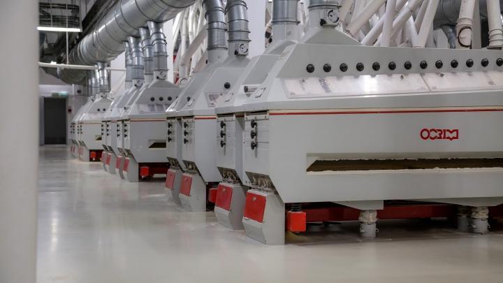MAKFA реализует новый инвестпроект стоимостью 500 млн рублей — запустит мельницу по переработке твердой пшеницы