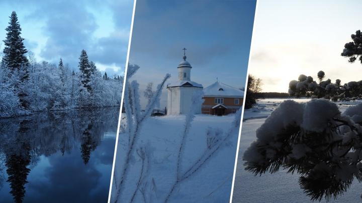 Водная гладь и брусника под снегом: житель Соловков показал, как прекрасна зима на севере