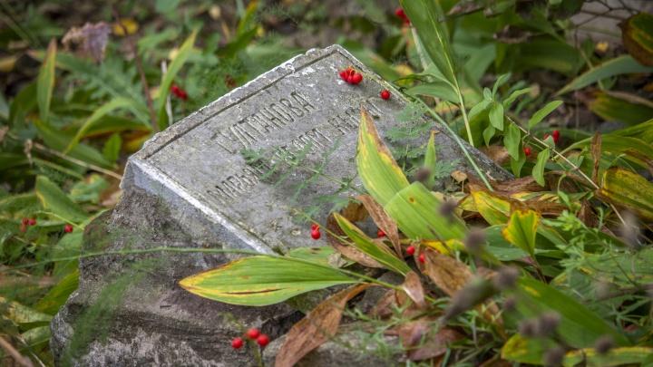 «Как можно к истории так относиться?» Гуляем по старейшему кладбищу Уфы. Выясняем, кто виноват в его разрухе