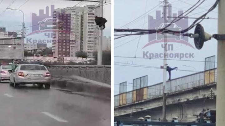На Копыловском мосту мужчина залез на опору ЛЭП и отказался оттуда слезать