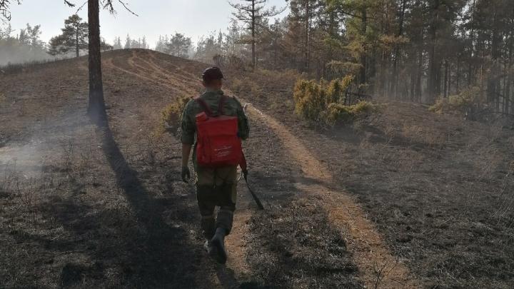 Радий Хабиров рассказал, как тушили лесные пожары в Башкирии