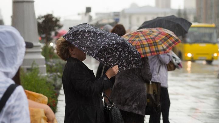 Спасатели предупредили о сильном ветре и дожде в Свердловской области