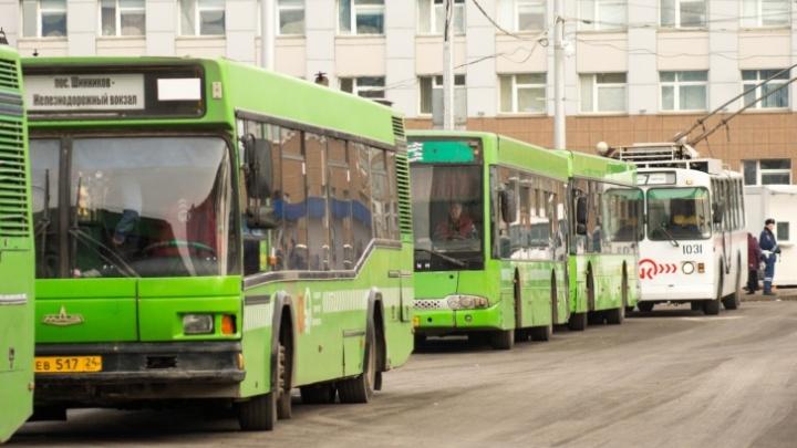 На автобусный маршрут №91 в Красноярске не нашлось перевозчиков