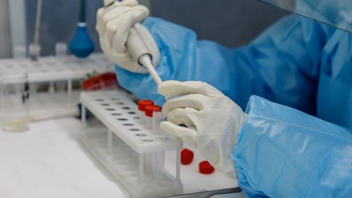Количество жителей Красноярского края с коронавирусом увеличилось на 22 человека