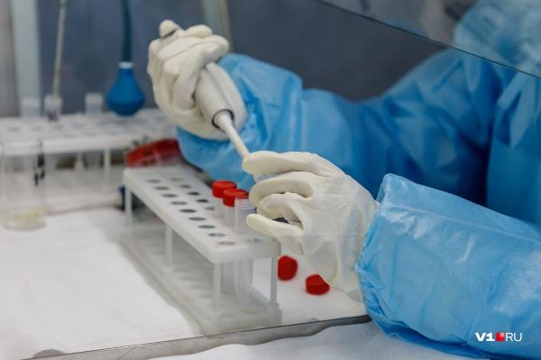В Красноярске тест на коронавирус теперь может сдать любой желающий за деньги