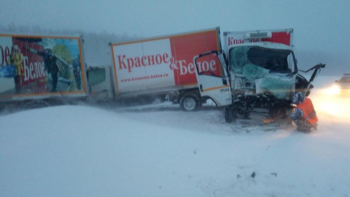 Четыре грузовика алкосети «Красное и Белое» столкнулись на тюменской трассе