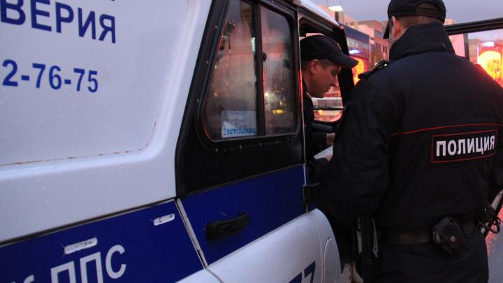 Под Новосибирском грузовик насмерть сбил пешехода