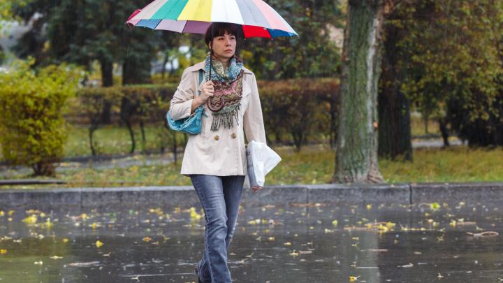 Дожди, осенняя серость и хмарь: рассказываем, какой погодой Волгоград встречает ноябрь