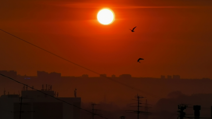 Новосибирцев восхитило красно-оранжевое солнце апрельского рассвета