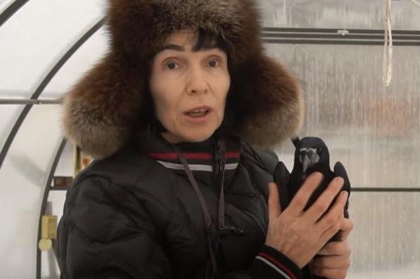 Женщина оборудовала в своей теплице все условия для своих подопечных