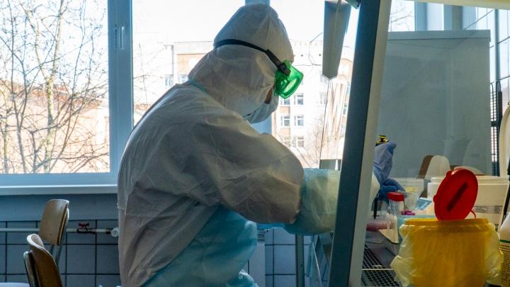 Количество заболевших продолжает расти: данные по распространению коронавируса на 2 августа