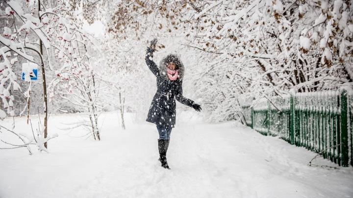 Тепло или трескучий мороз? Изучаем прогноз погоды на ближайшую неделю в Новосибирске