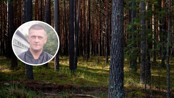 Уральского дальнобойщика, пропавшего в тюменских лесах, ищут с начала сентября (он вышел из машины и исчез)